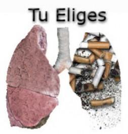ROMPE CON EL TABACO - CAMPAÑA AECC 13112009416pulmon_o_tabaco