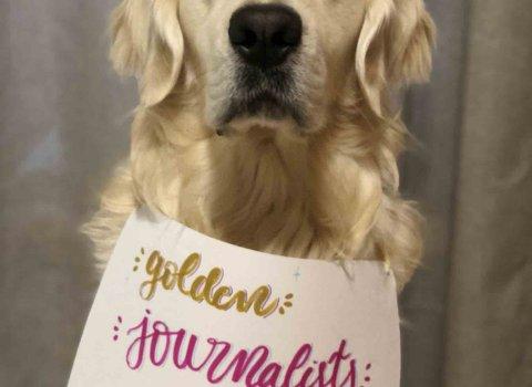 Golden Journalists